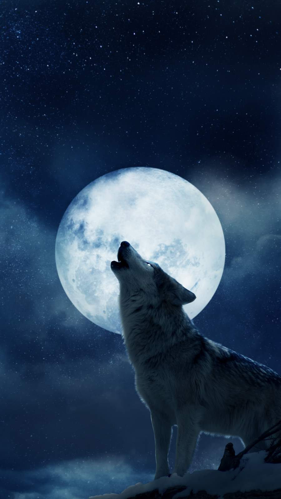 Full Moon iPhone Wallpaper