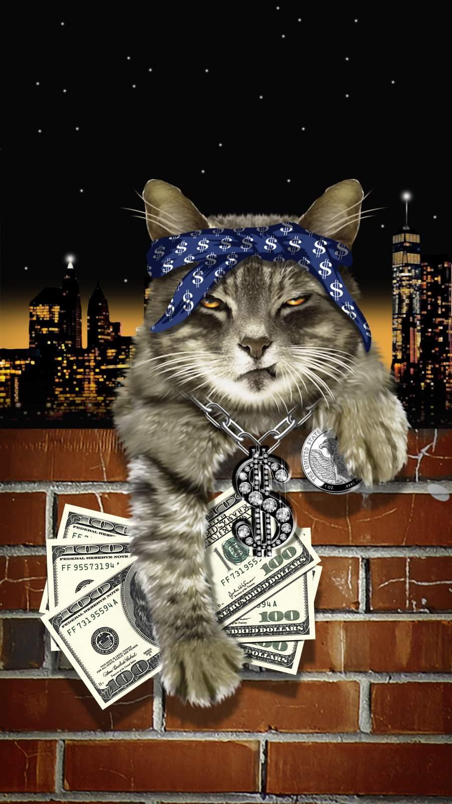 Gangsta Cat iPhone Wallpaper