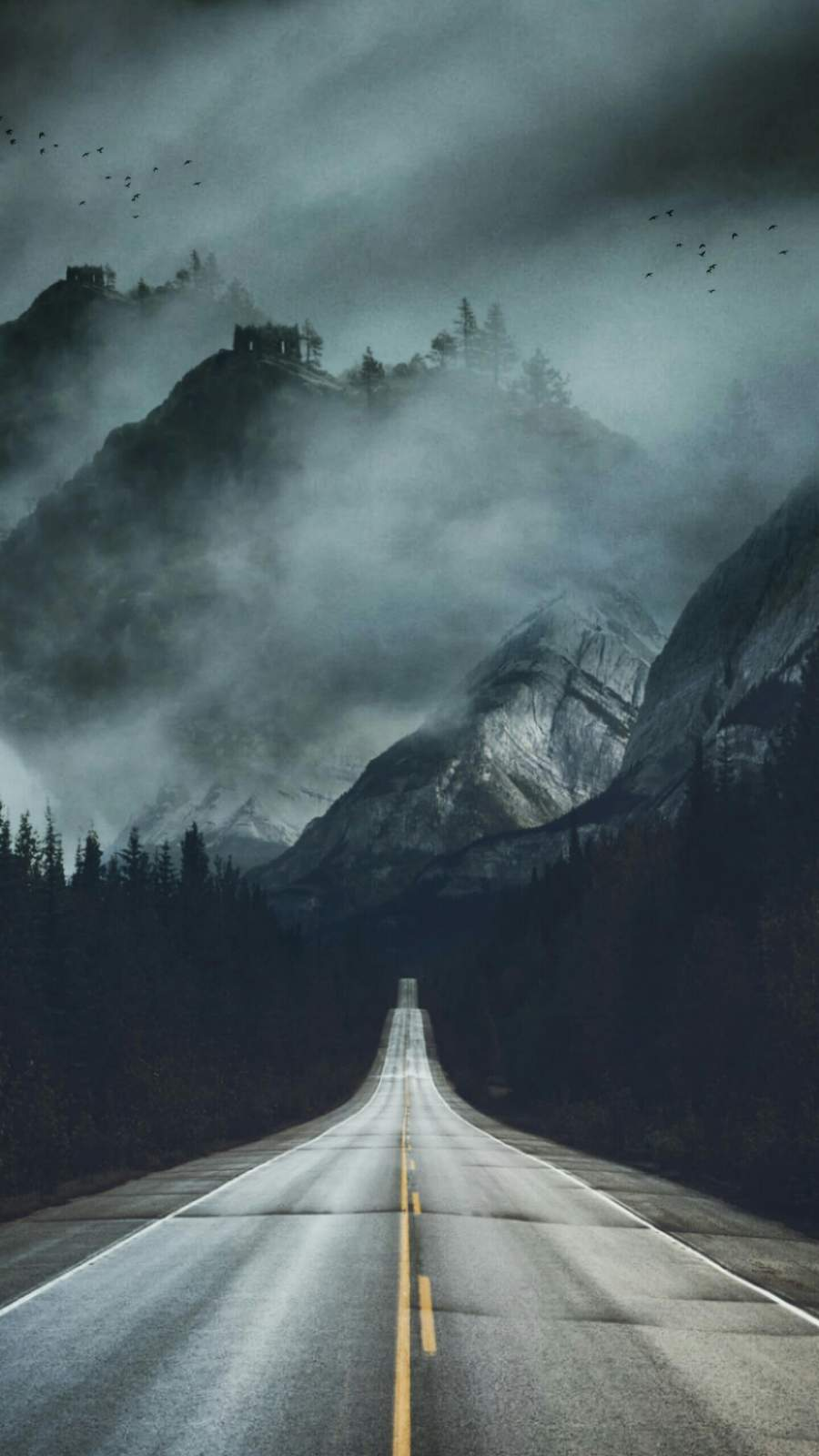 Mist Road iPhone Wallpaper