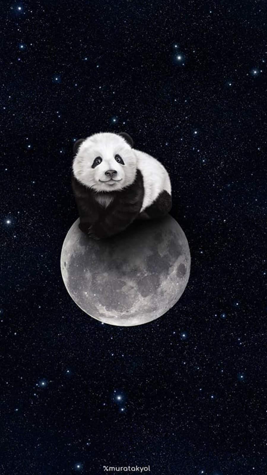 Panda Moon iPhone Wallpaper