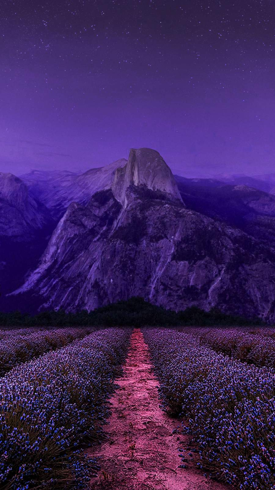 Purple Nature iPhone Wallpaper