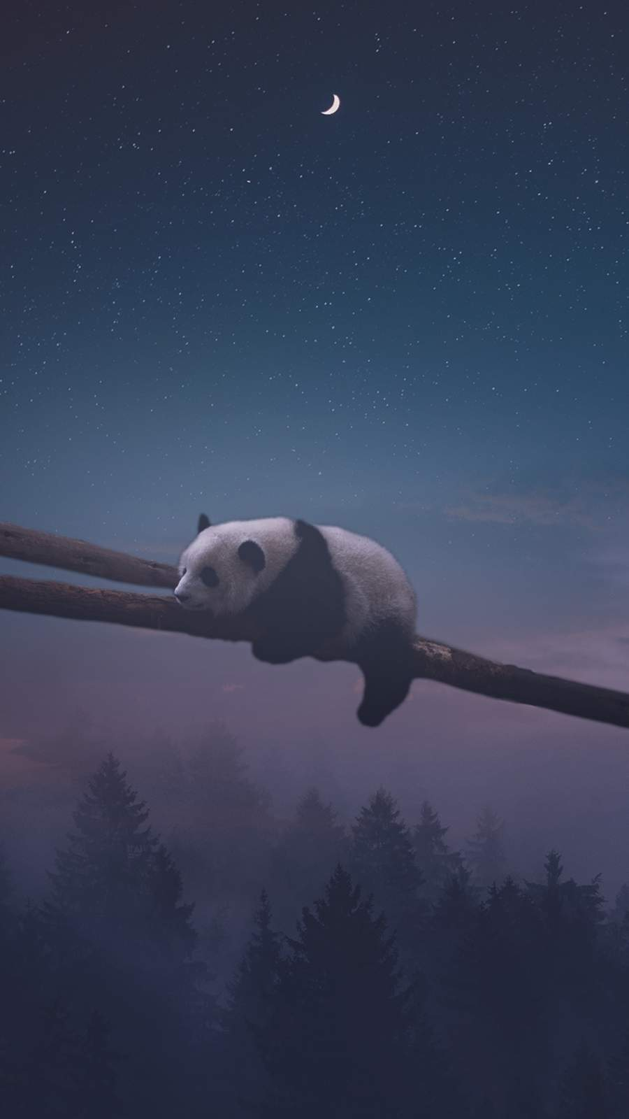 Sleeping Panda iPhone Wallpaper