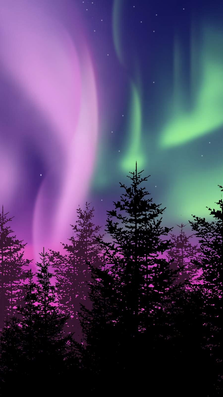 Winter Northern Lights iPhone Wallpaper