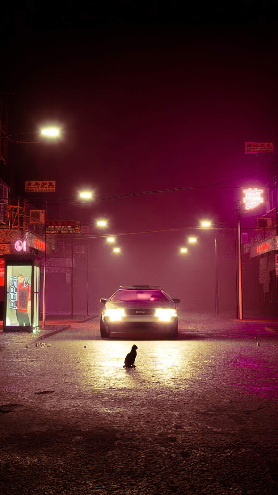 Cat on Road iPhone Wallpaper