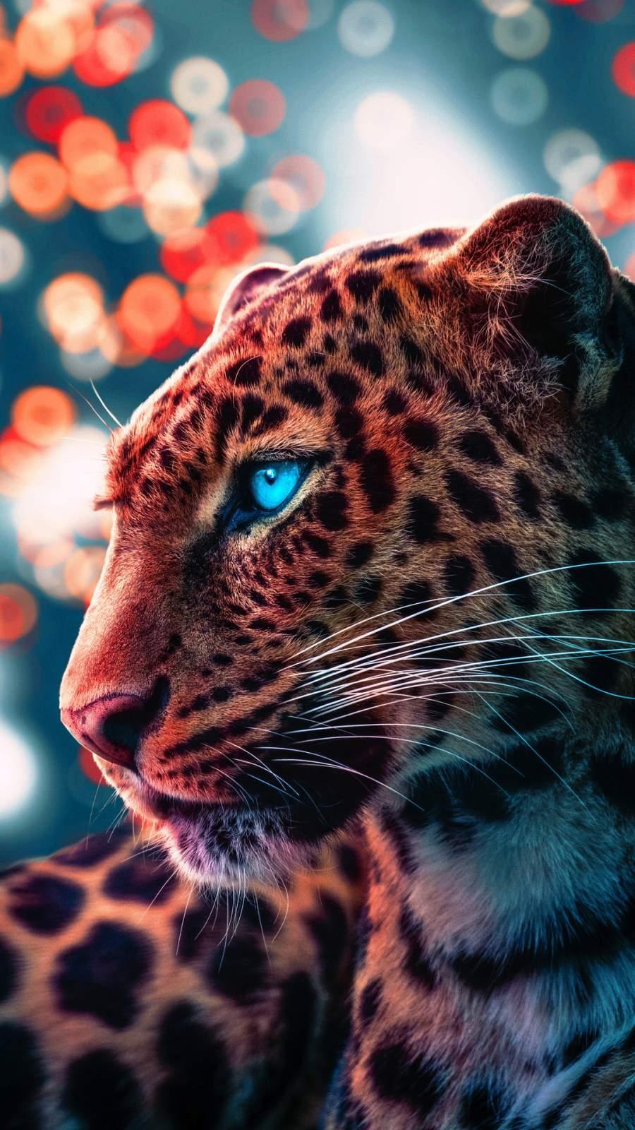 Cheetah Magical Eyes iPhone Wallpaper