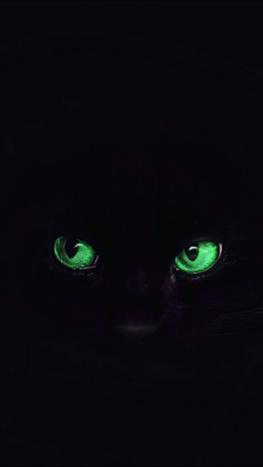 Black Cat Eyes iPhone Wallpaper