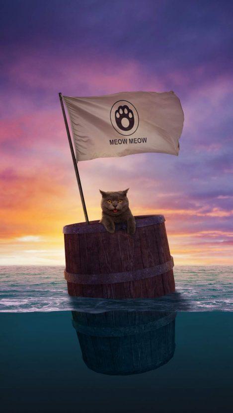 Cat Sailing iPhone Wallpaper