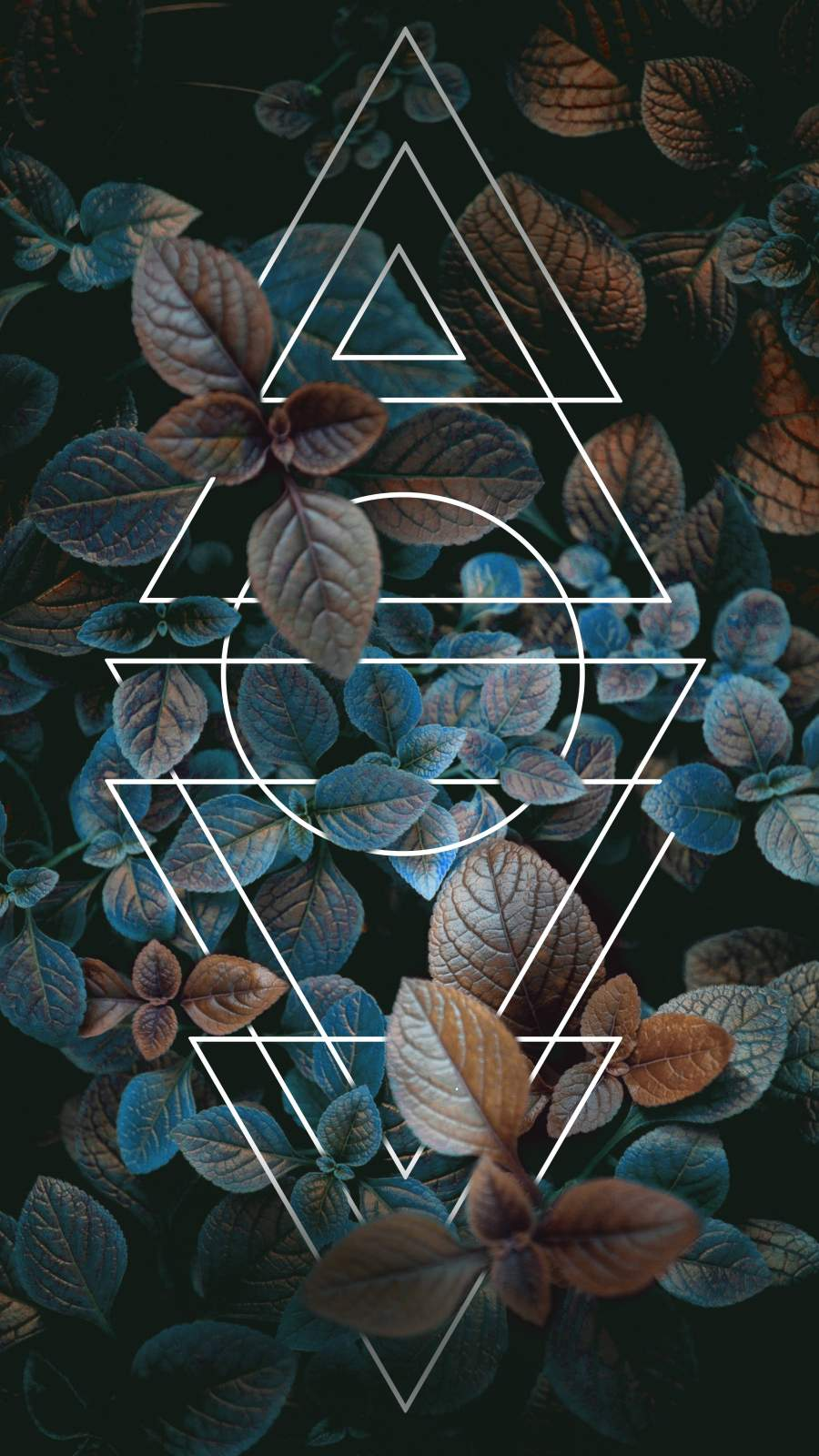 Foliage Design iPhone Wallpaper