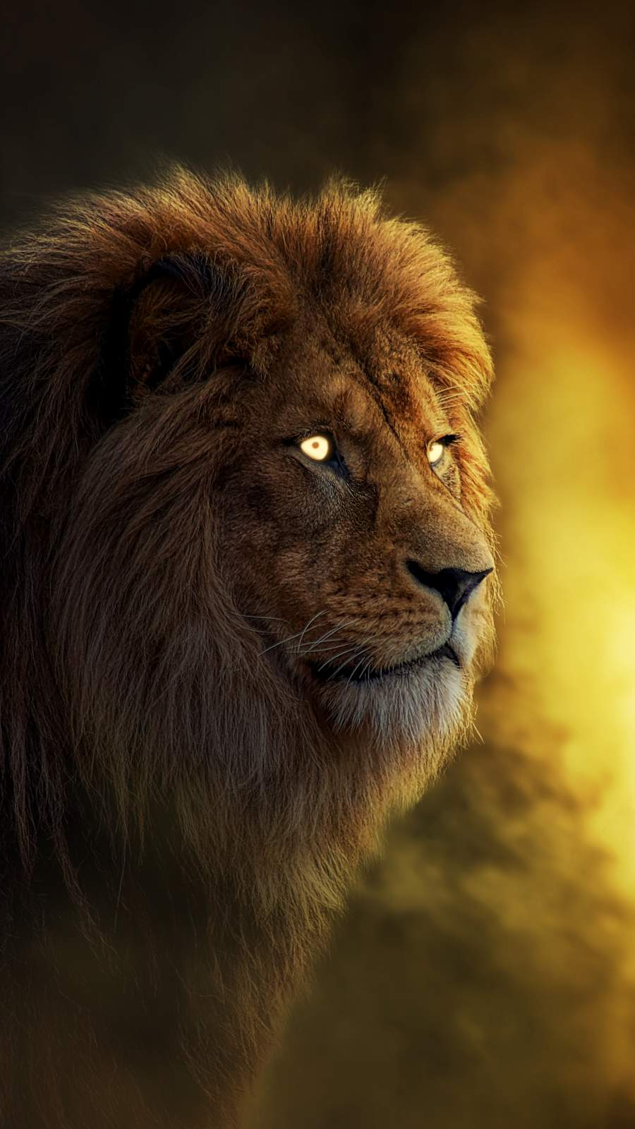 THE KING LION iPhone Wallpaper
