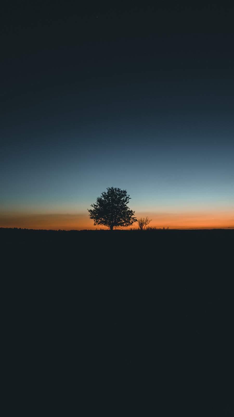 Tree Silhouette iPhone Wallpaper