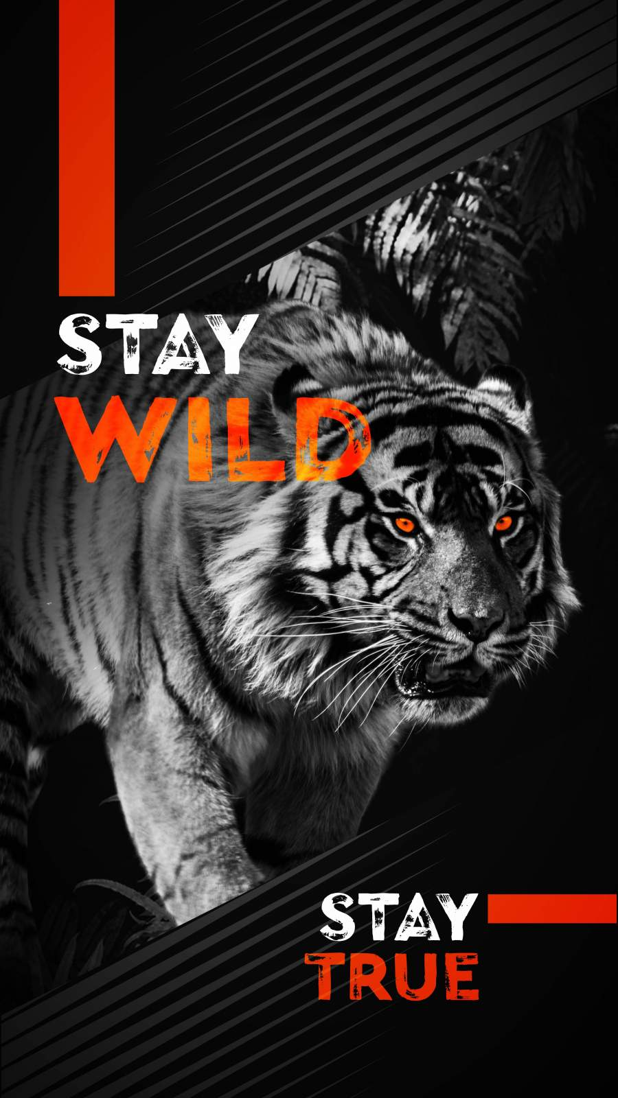 Stay Wild iPhone Wallpaper