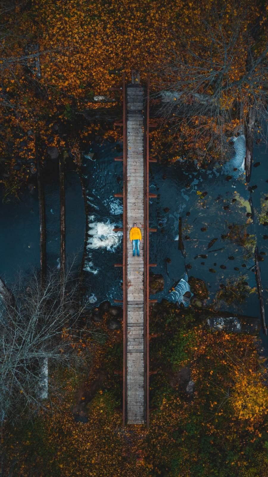 Aerial View Bridge Wallpaper
