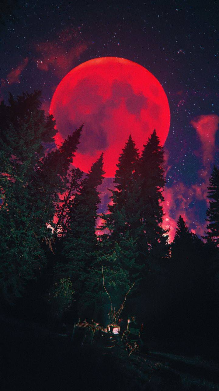 Blood Red Moon Night