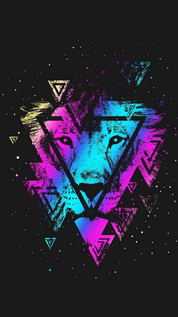 Lion Colorful Triangle