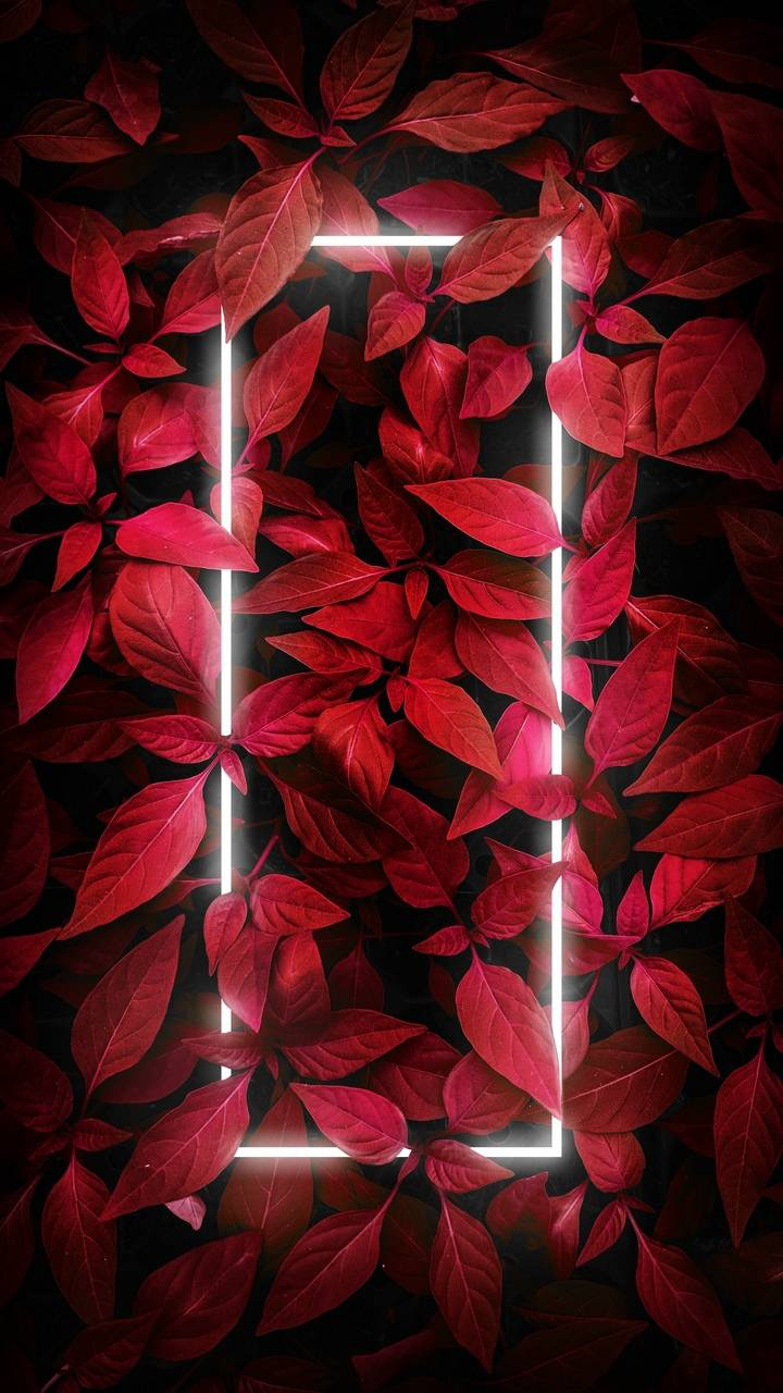 Red Foliage Neon Light