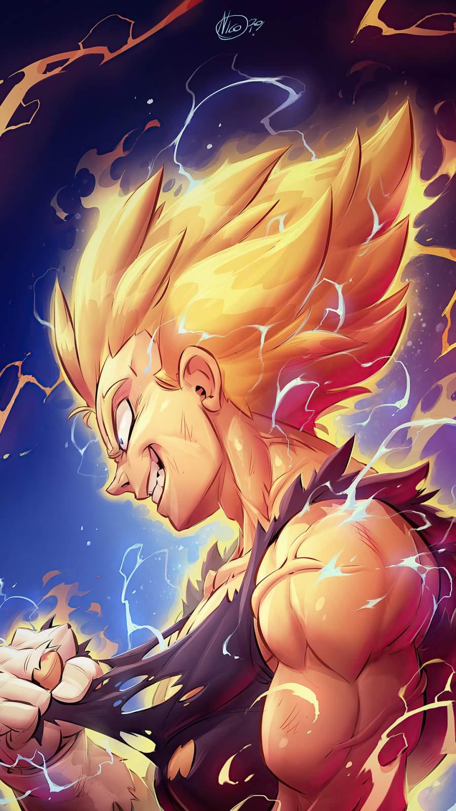 Vegeta Dragon Ball Z
