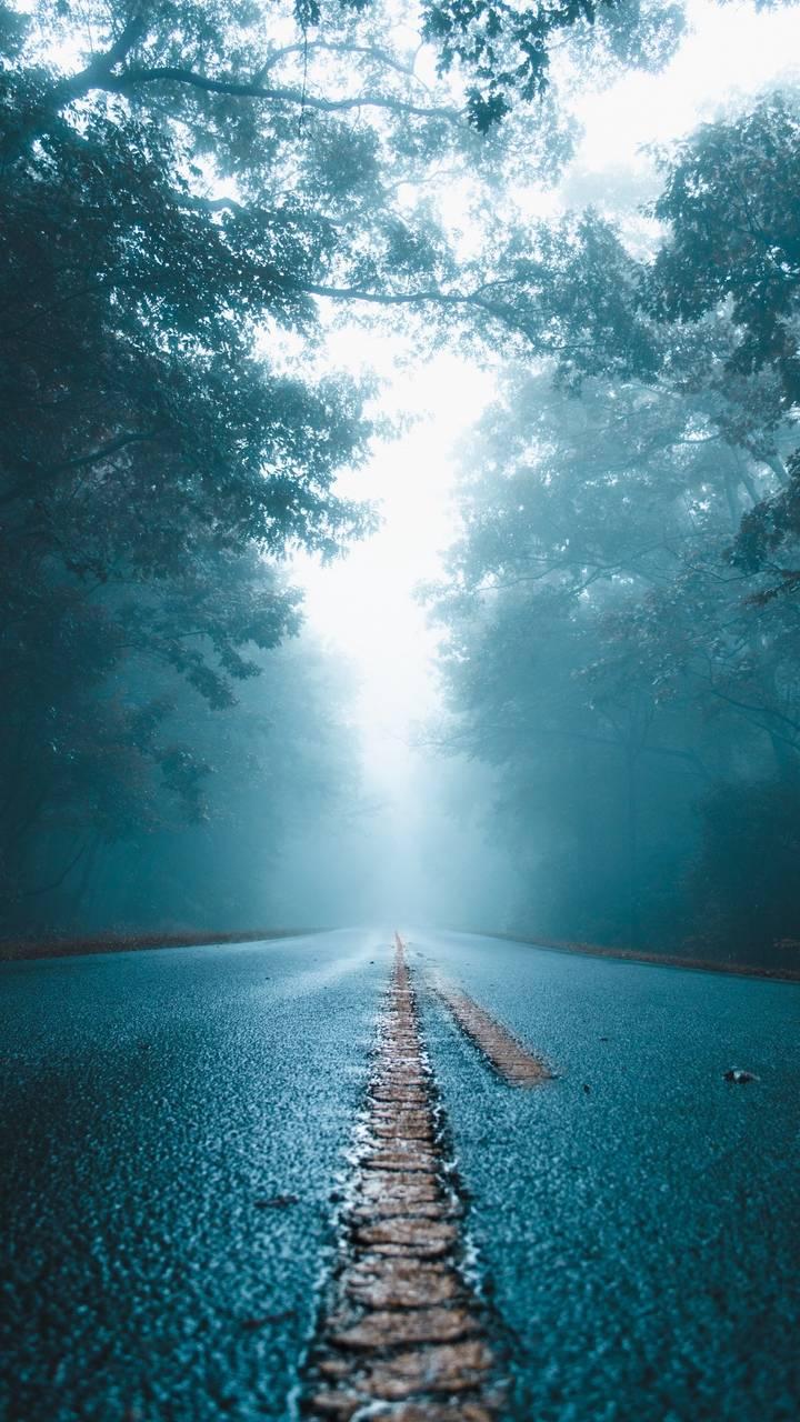 Wet Mist Road