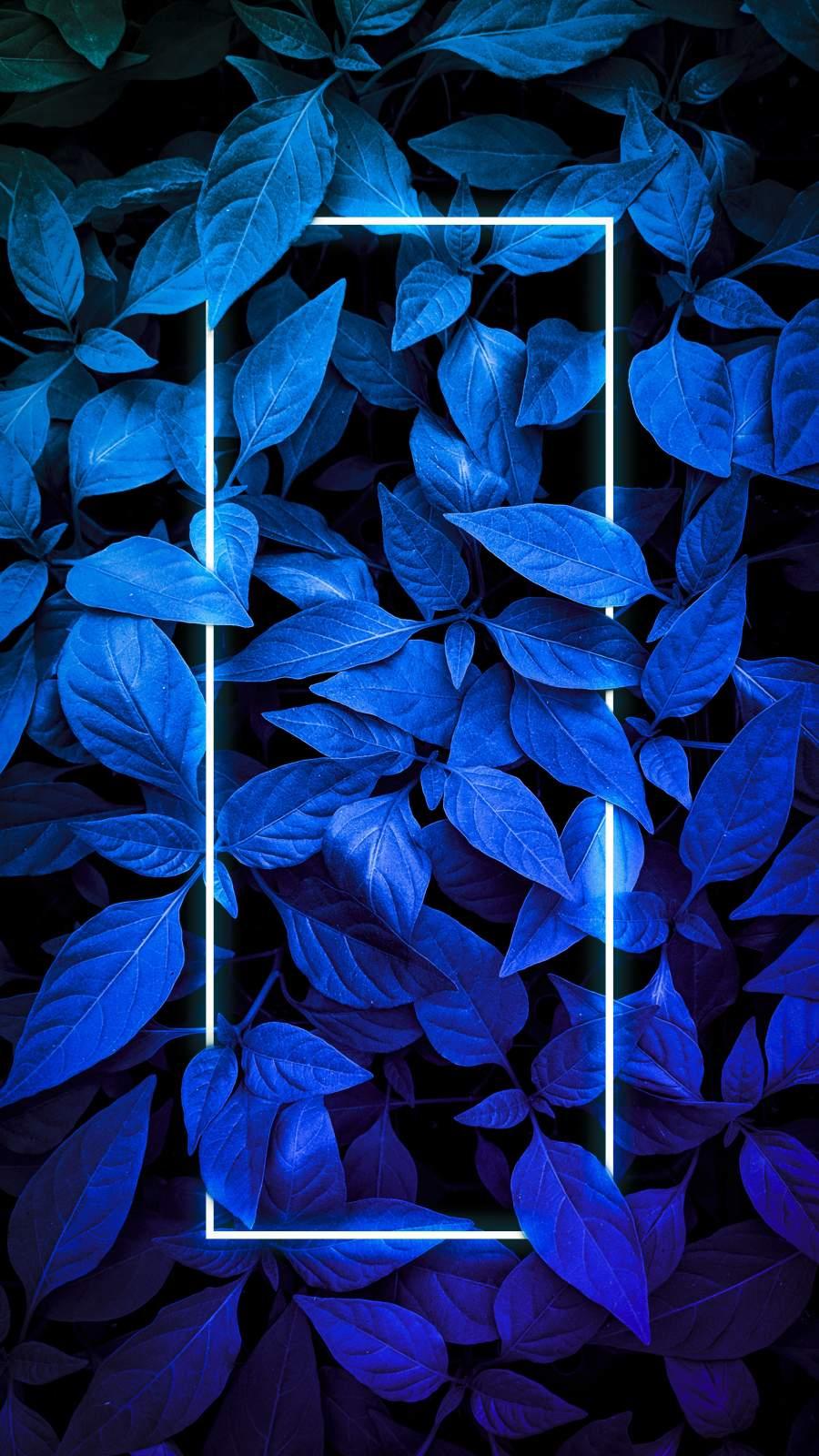 Blue Foliage Neon Light iPhone Wallpaper