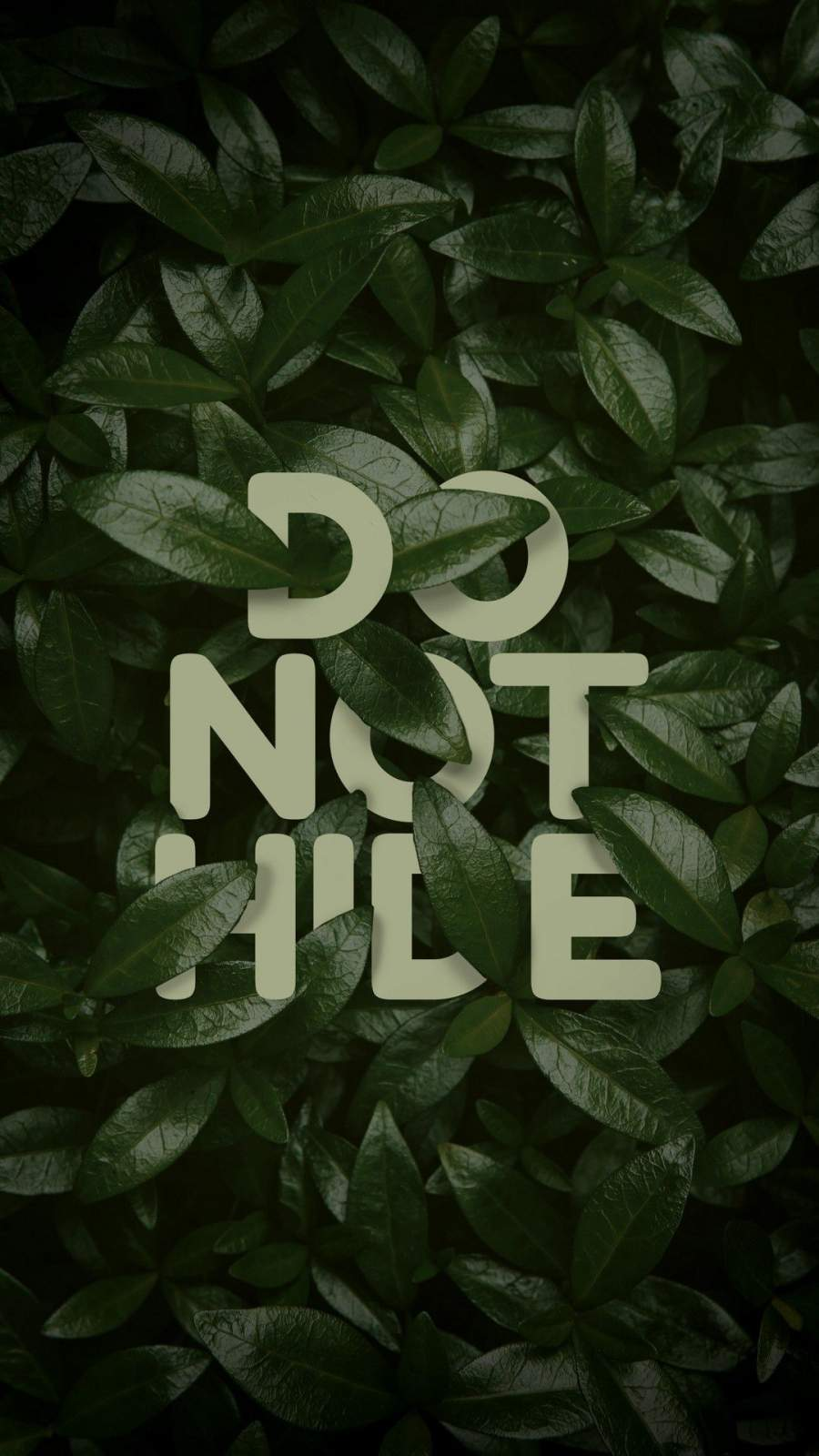 Do Not Hide iPhone Wallpaper