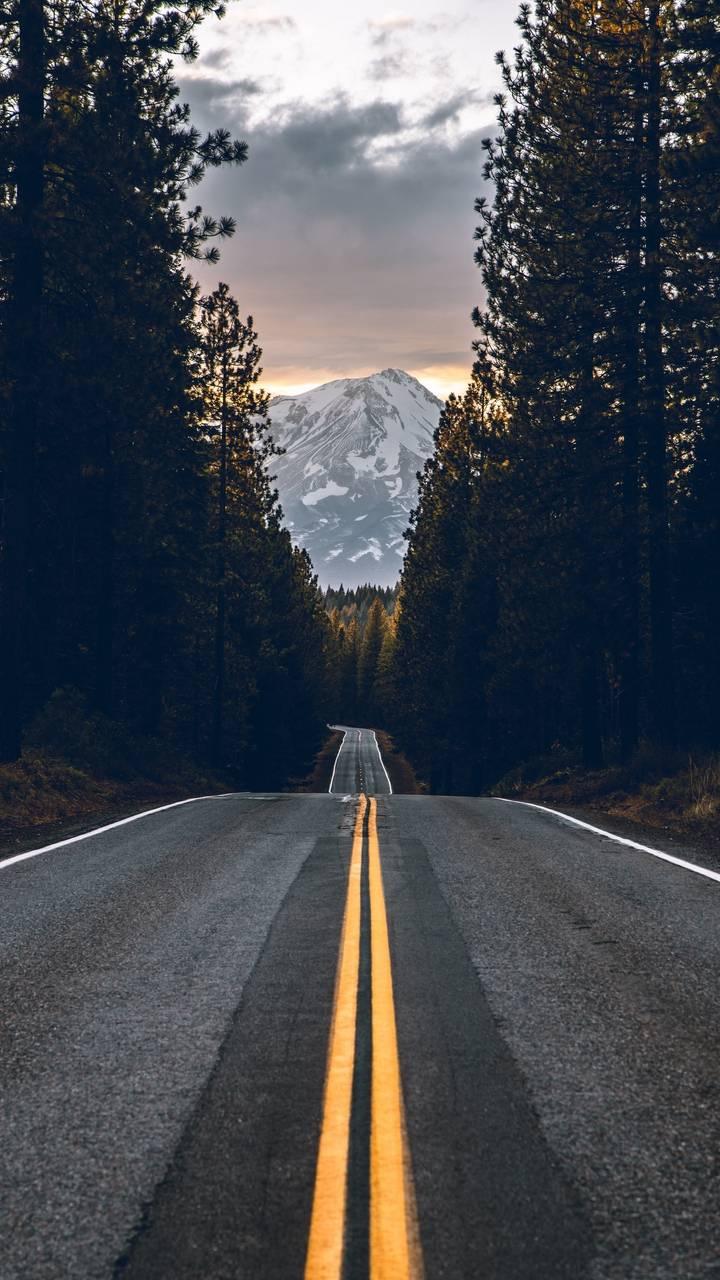 Morning Road Wallpaper