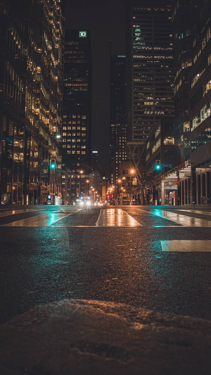Night City Lights Wallpaper