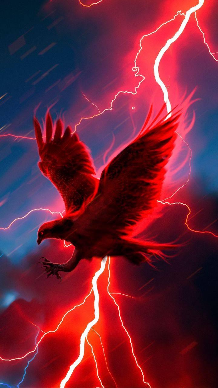 Raven Thunder iPhone Wallpaper