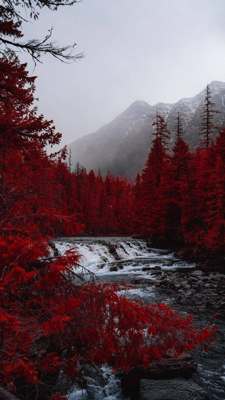 Red Forest Waterfall iPhone Wallpaper