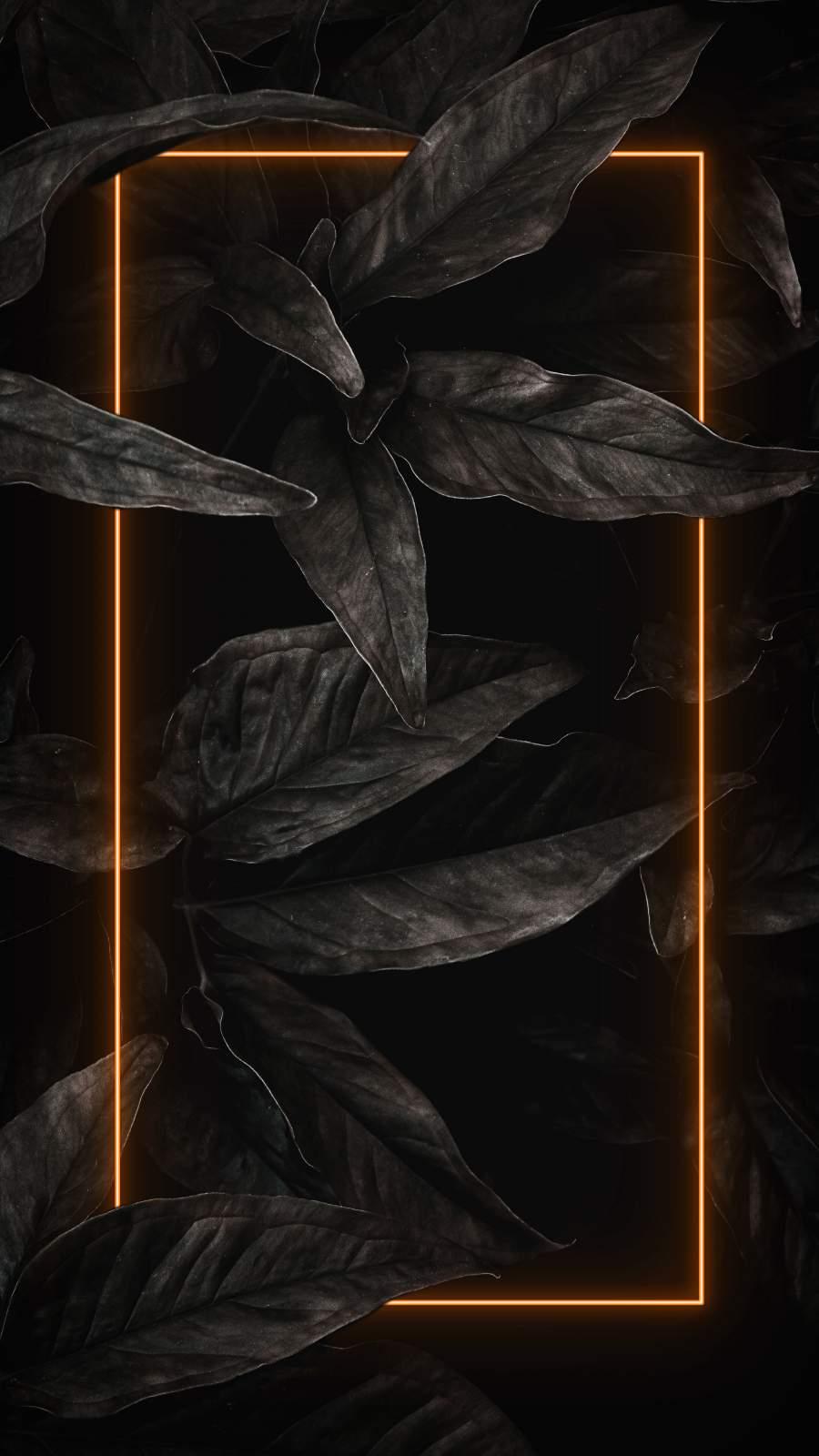 Black Nature Neon