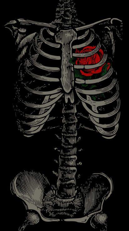 Heart Skeleton iPhone Wallpaper