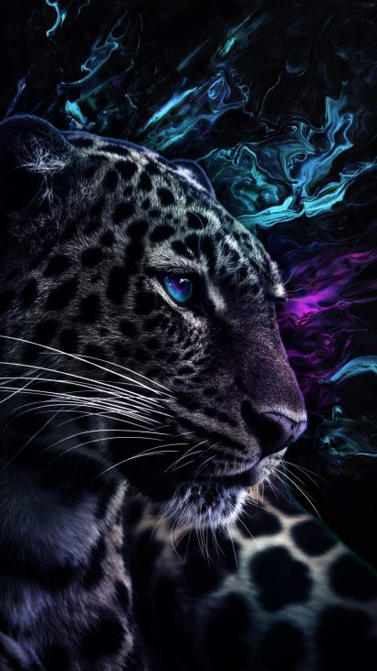 Jaguar Predator Eyes
