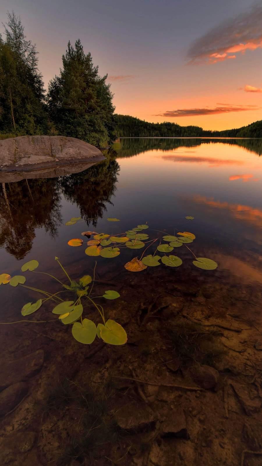 Lake Reflection Nature Sunset