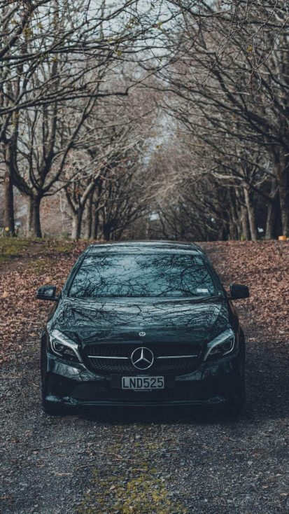 Mercedes Benz Autumn
