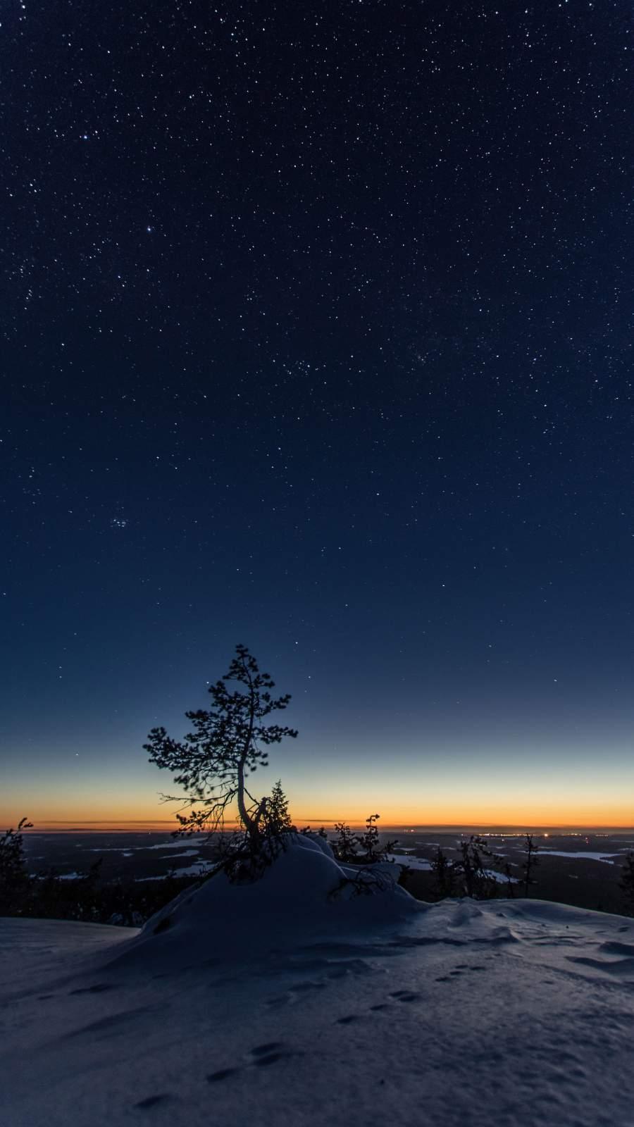 Starry Night Snow Tree