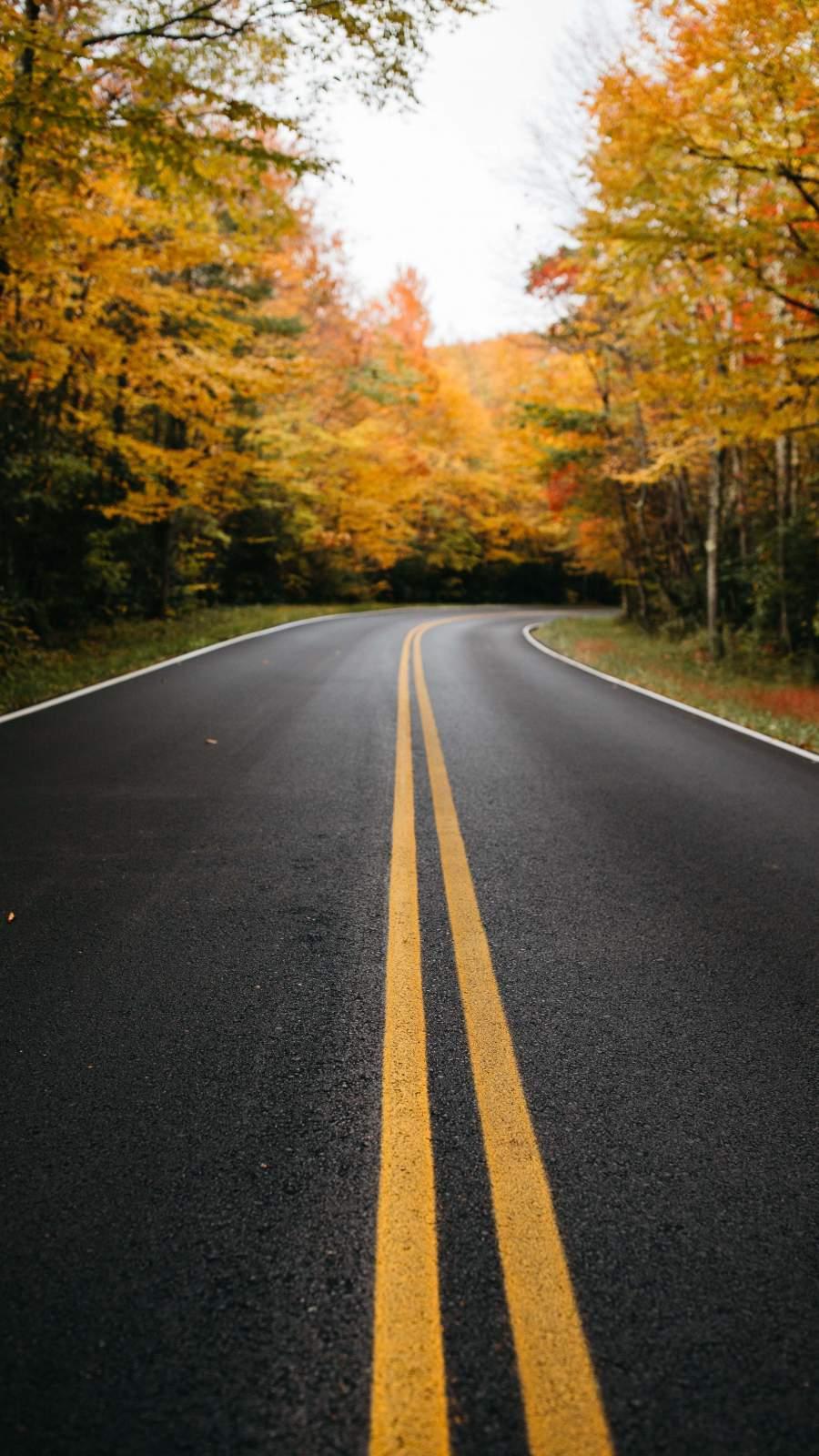 Autumn Road Canada