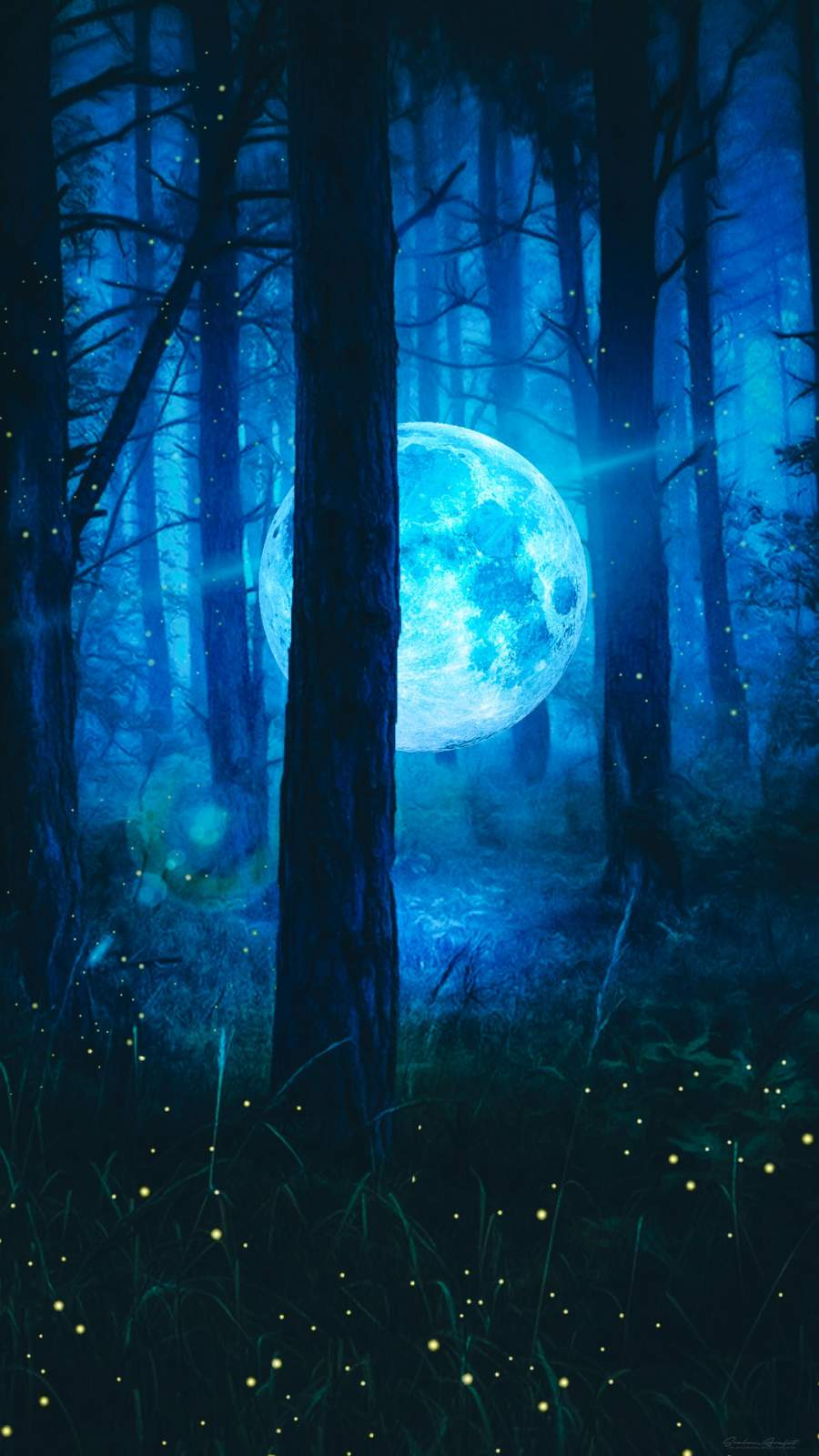 Moon In Forest