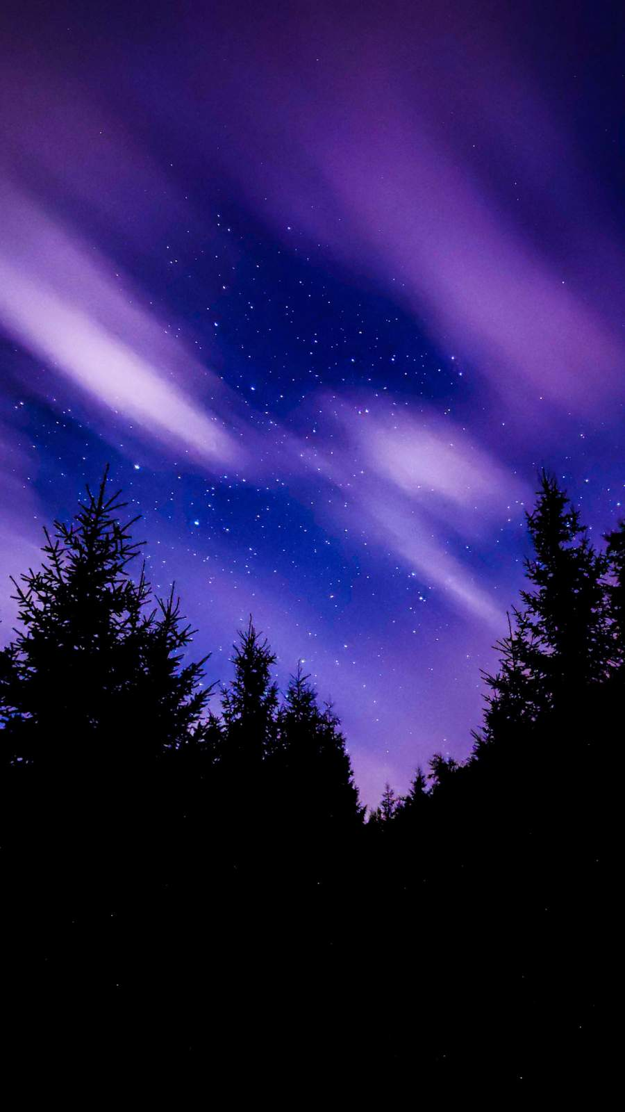 Night Sky Lights