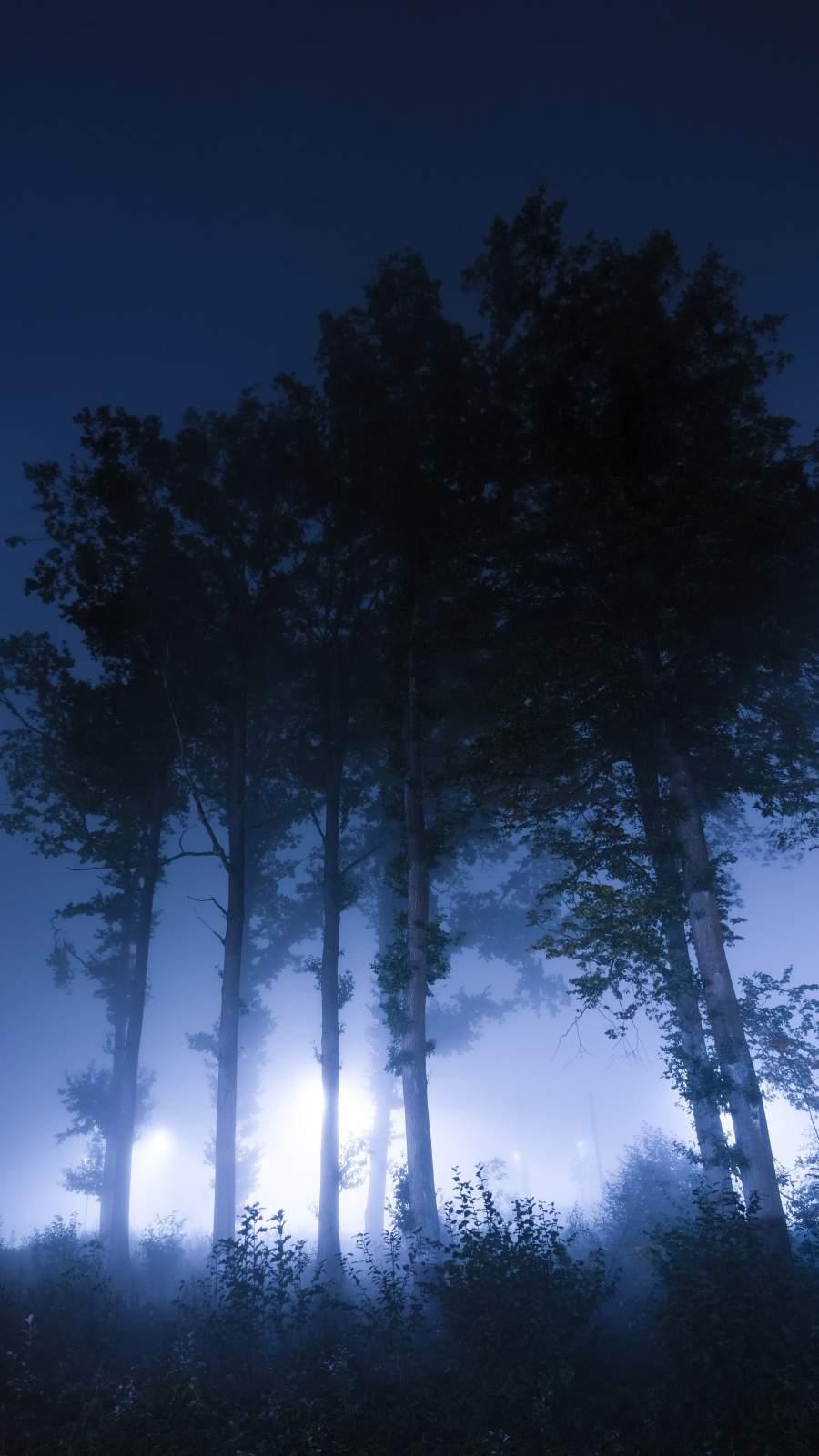 Night Trees iPhone Wallpaper