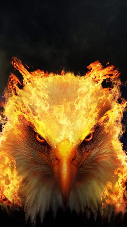 Phoenix Mode