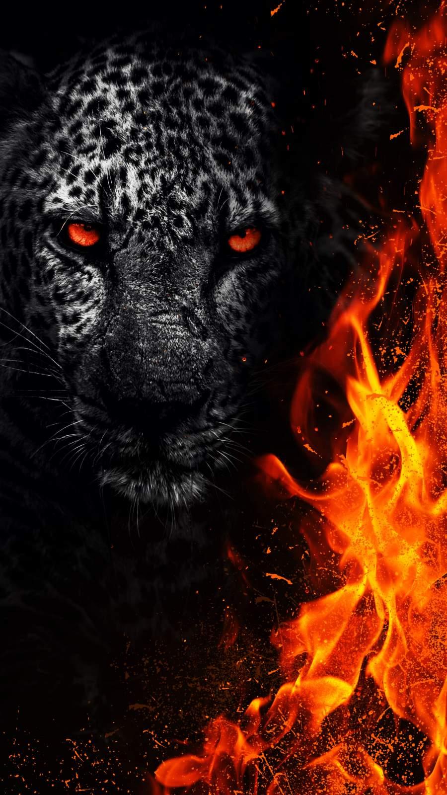 Predator Animal iPhone Wallpaper