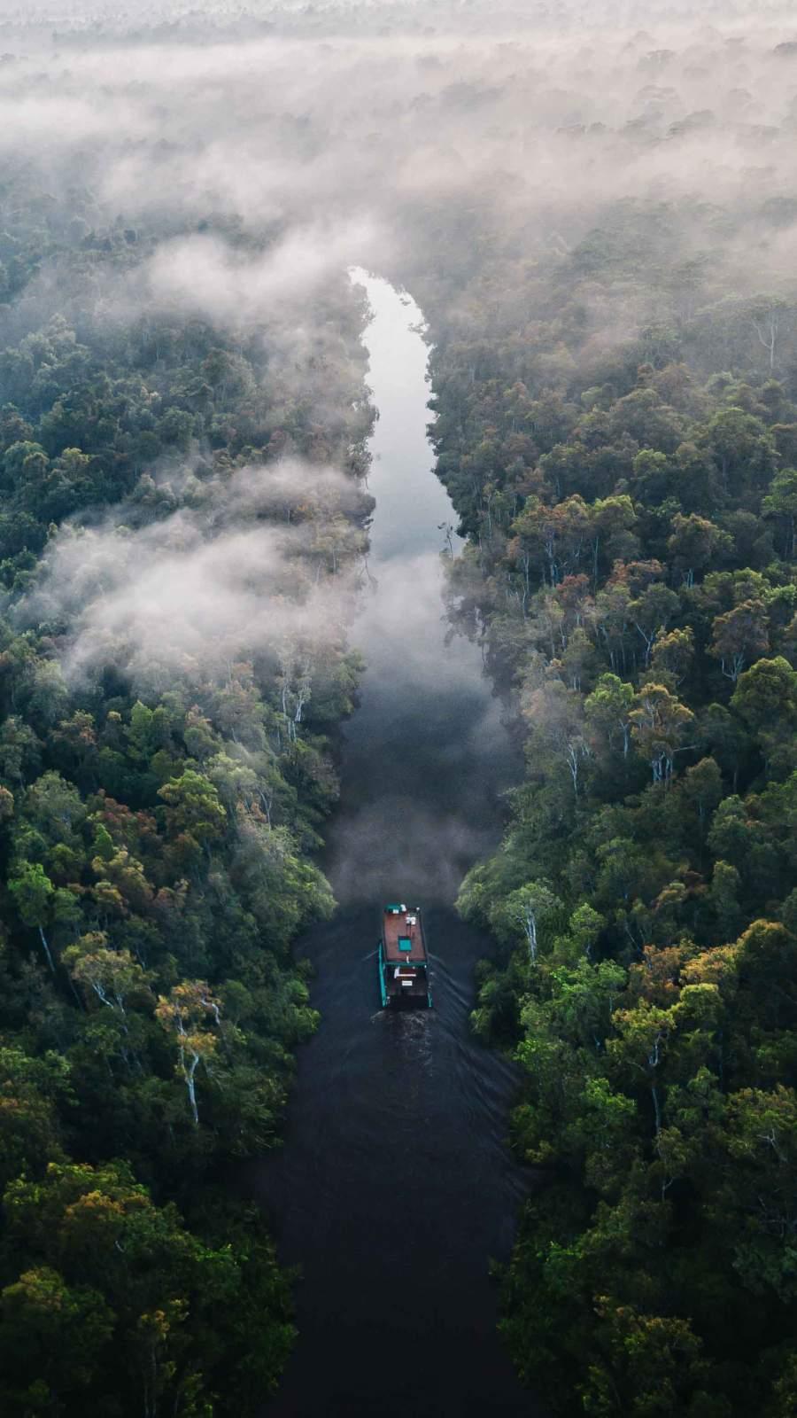 Amazon River iPhone Wallpaper