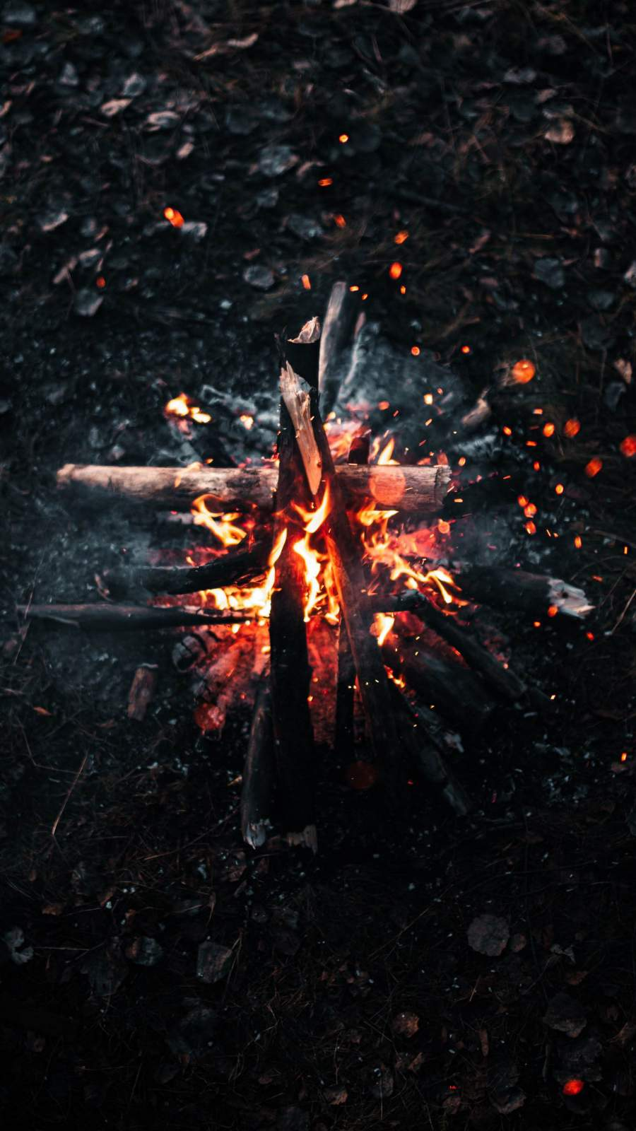 Burning Firewood Camping