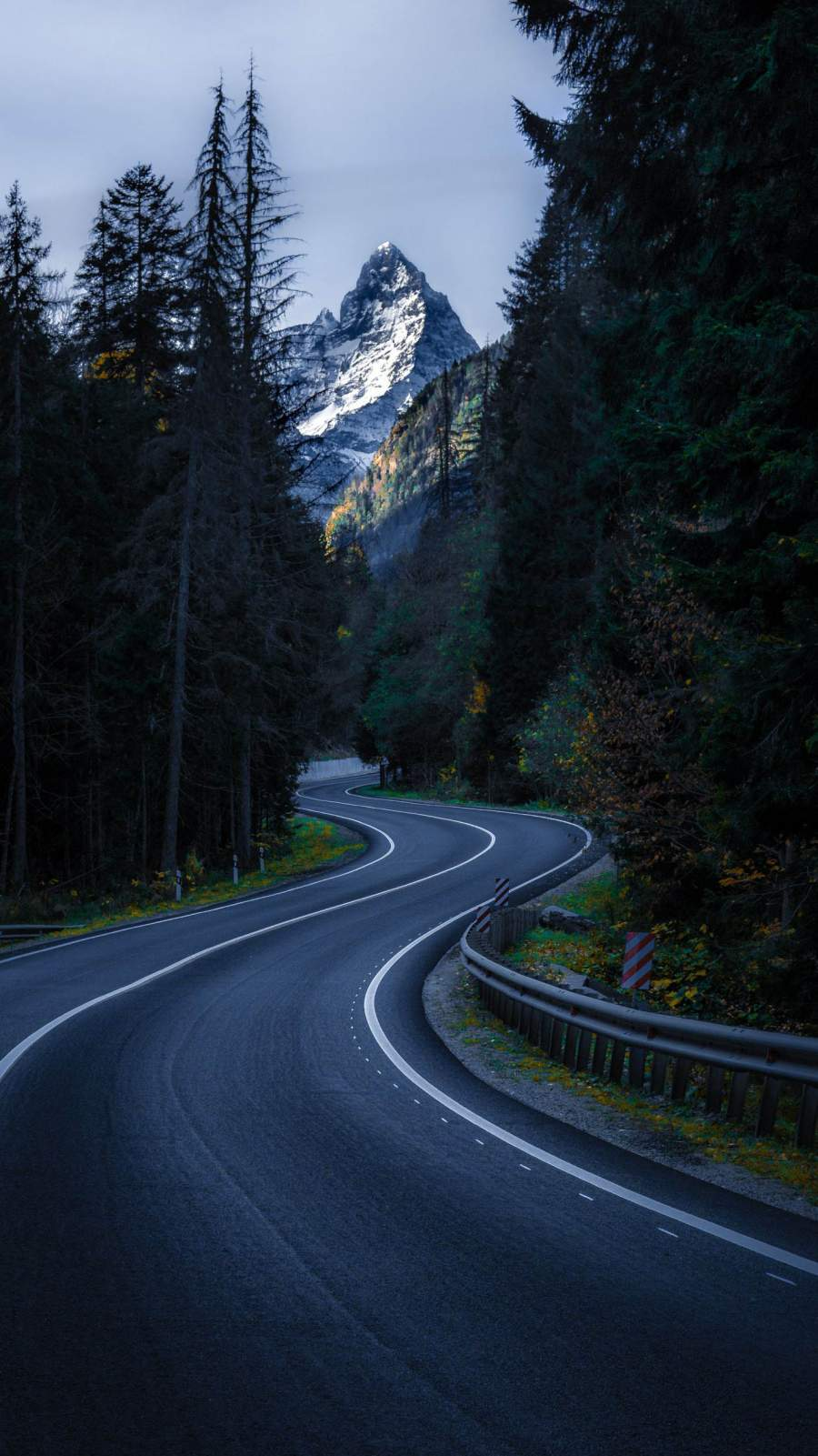 Curvy Road Nature iPhone Wallpaper
