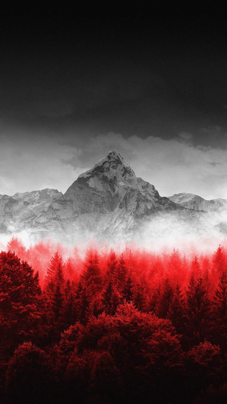 Red Forest Mountain