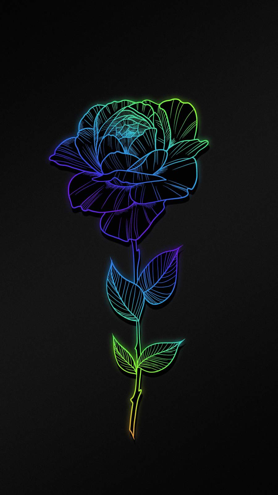 Rose Flower Art iPhone Wallpaper