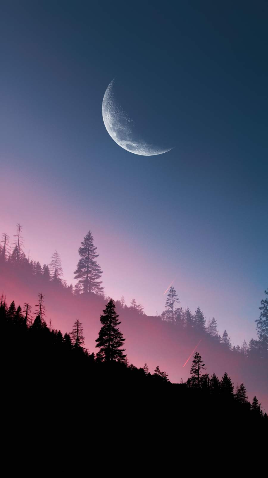 Sunset Forest Moon View