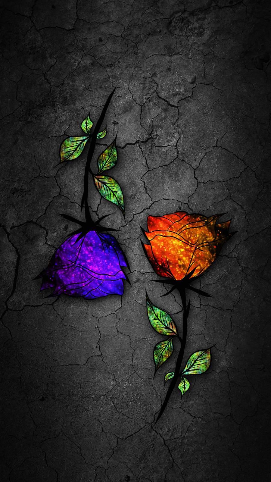 Colorful Roses iPhone Wallpaper