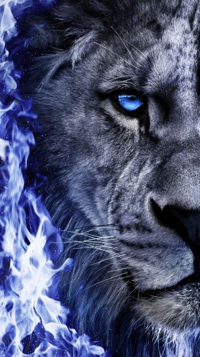 Fire Lion iPhone Wallpaper