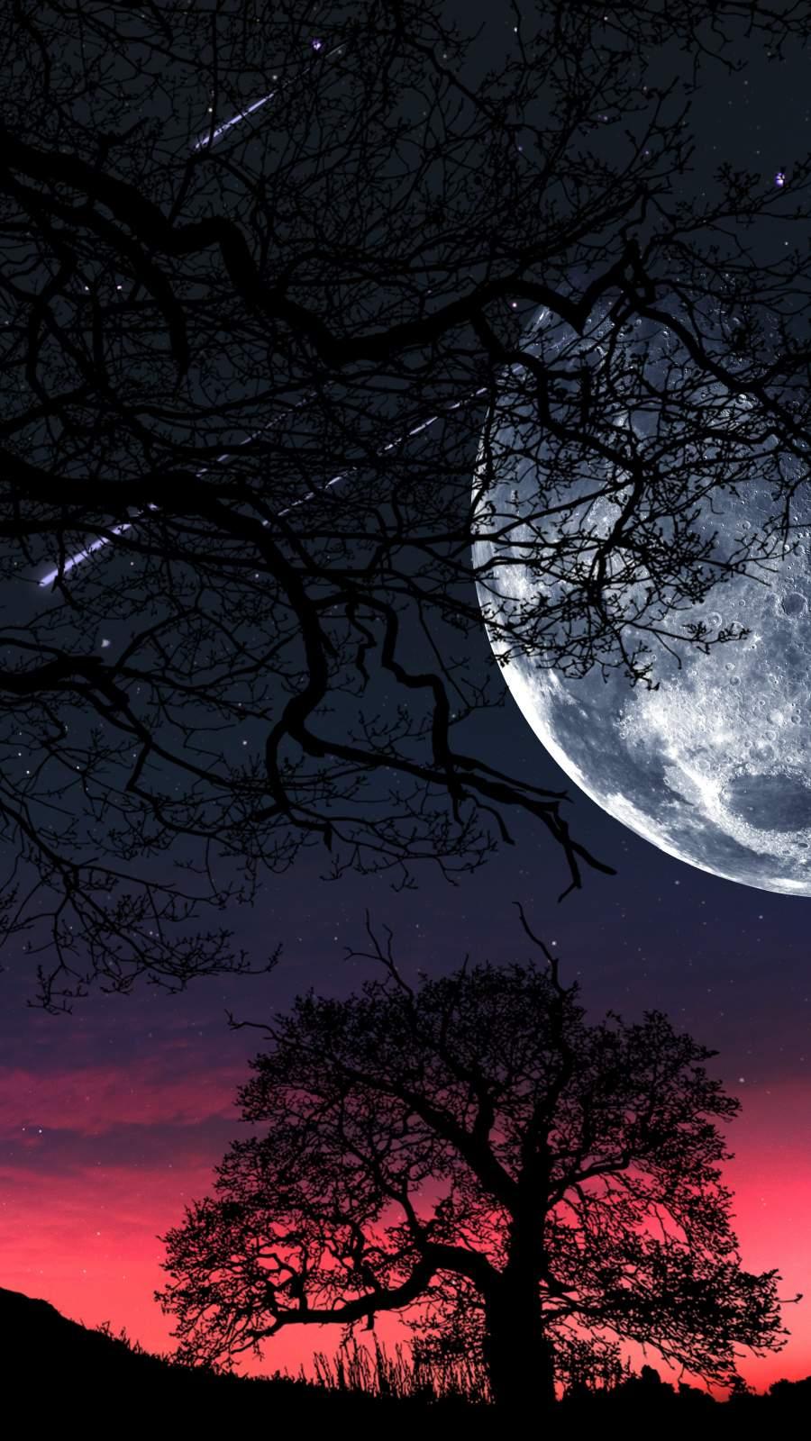 Moon Tree Silhouette
