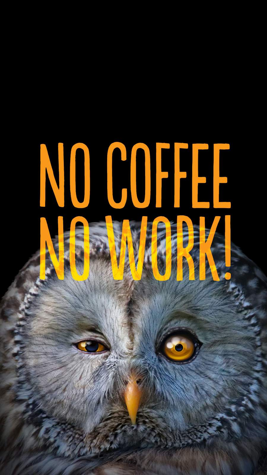 No Coffee No Work