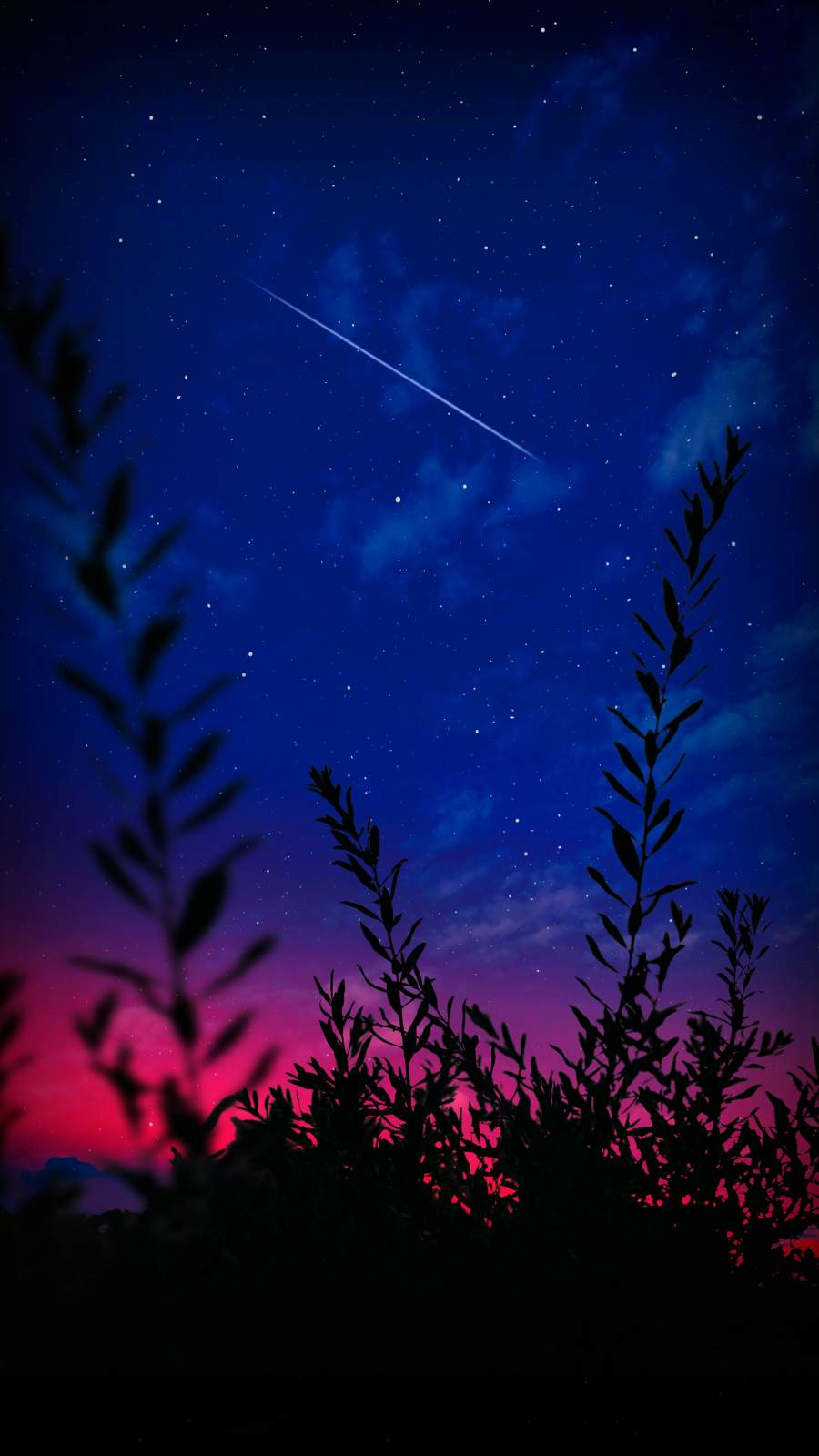 Starry Sky Shooting Star Nature